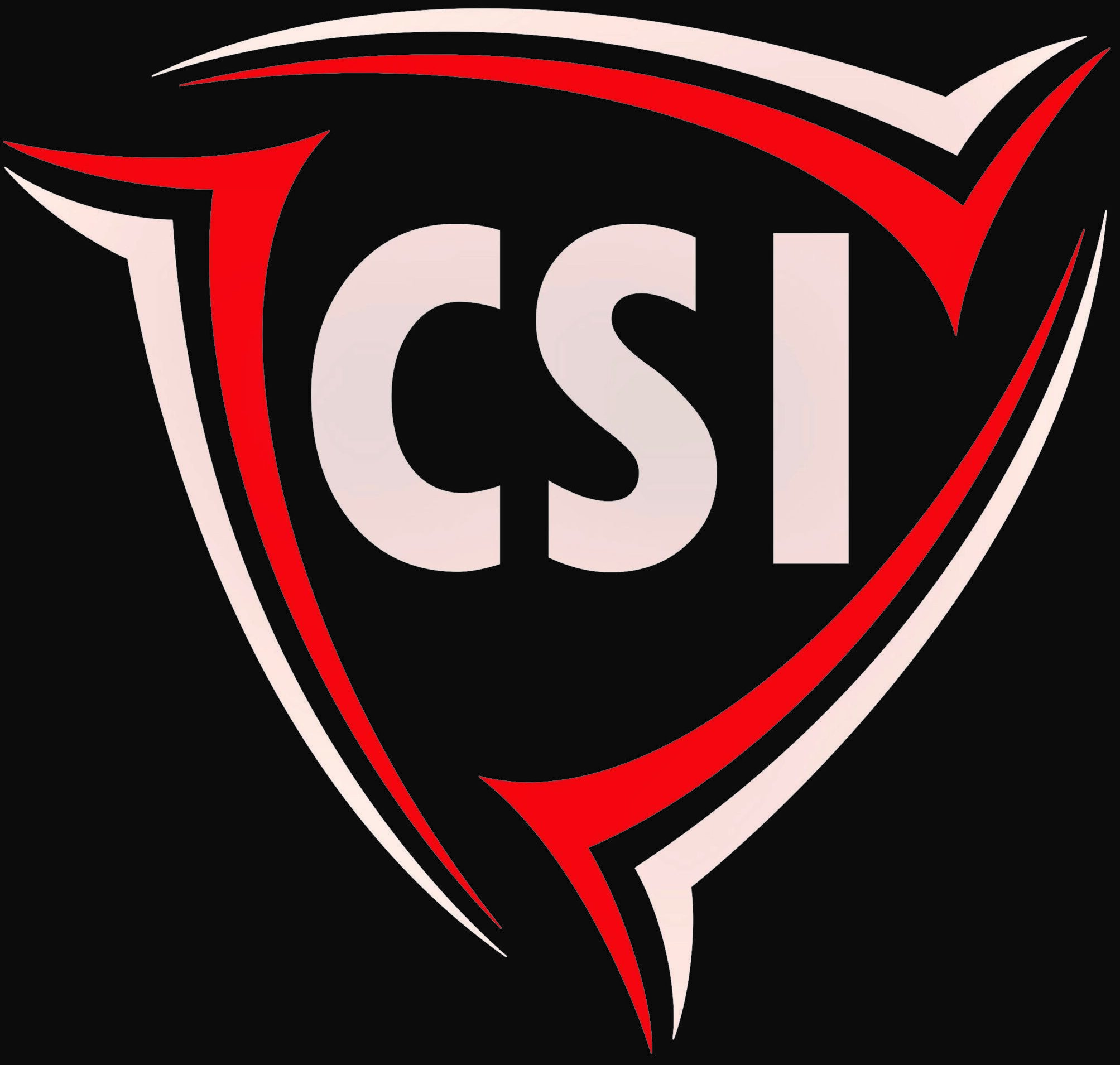 CSI Sécurité Logo